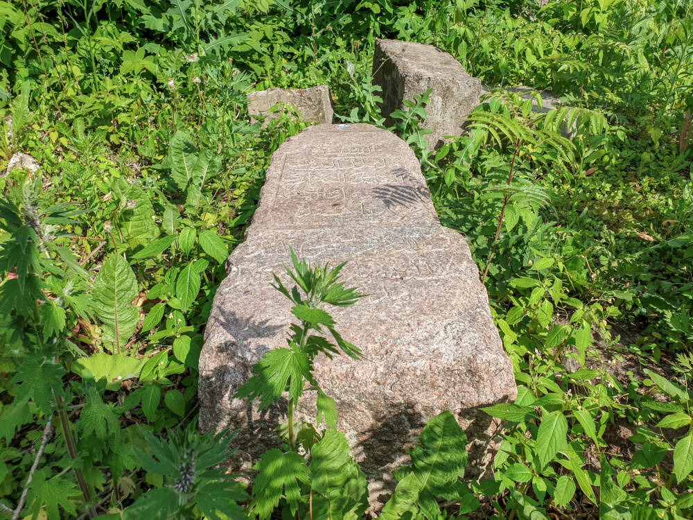 Заброшенное мусульманское кладбище «Бишбалта» в центре Казани © ДРУГИЕ МЕСТА
